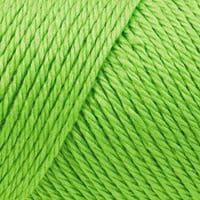 Caron Simply Soft Acrylic Aran Knitting Wool Yarn 170g -9607 Limelight